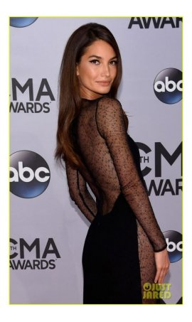Lily Aldridge CMA Awards 2014 Black Long Sleeve Sheer Red Carpet Celebrity Dress Online